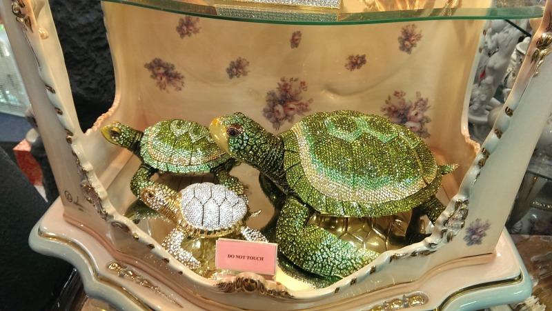 turtle-489327_1280